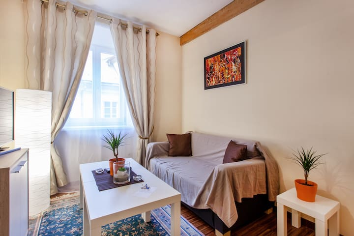 The Bouquet residence in the old Ljubljana - Liubliana - Apartamento