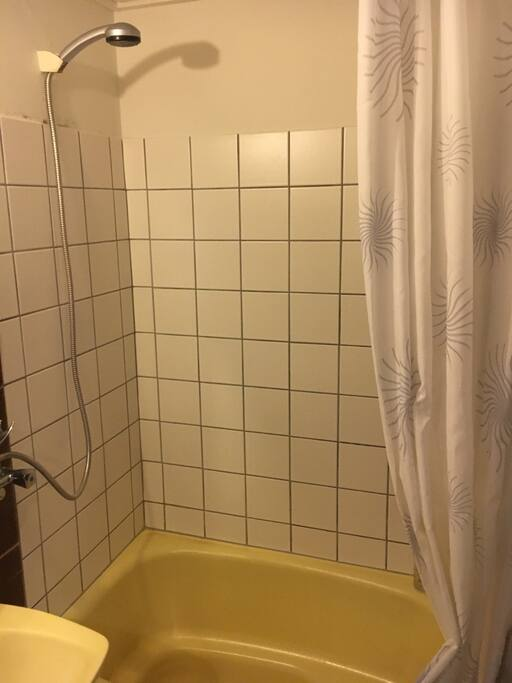 Bathroom. Small, but with shower and a small tube.