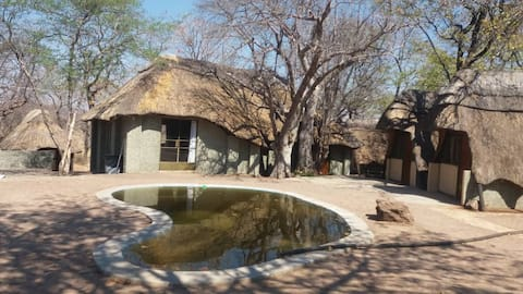 Bush Camping, Transport to/from Vic Falls, Tours 4