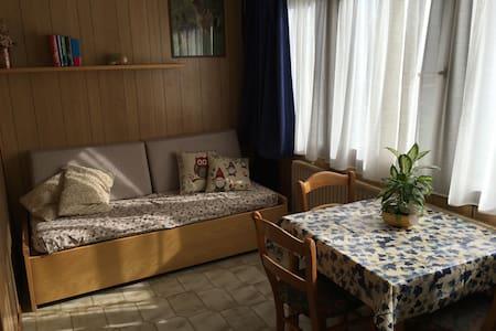 RESIDENCE AQUILONE   MARILLEVA 1400 - Marilleva - Apartamento
