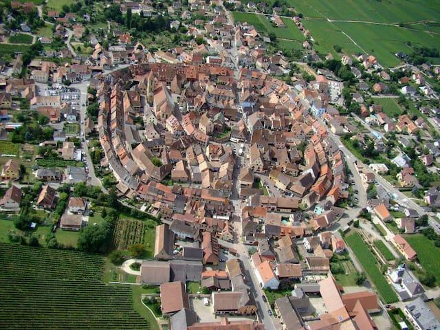 Gîte au coeur d'Eguisheim   - Eguisheim - อพาร์ทเมนท์