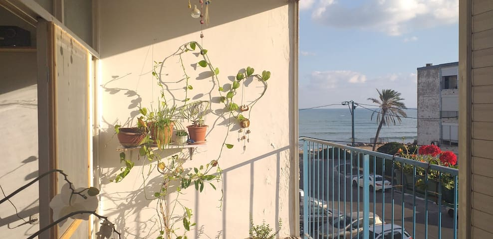 sea view apartment 40 meter from the beach