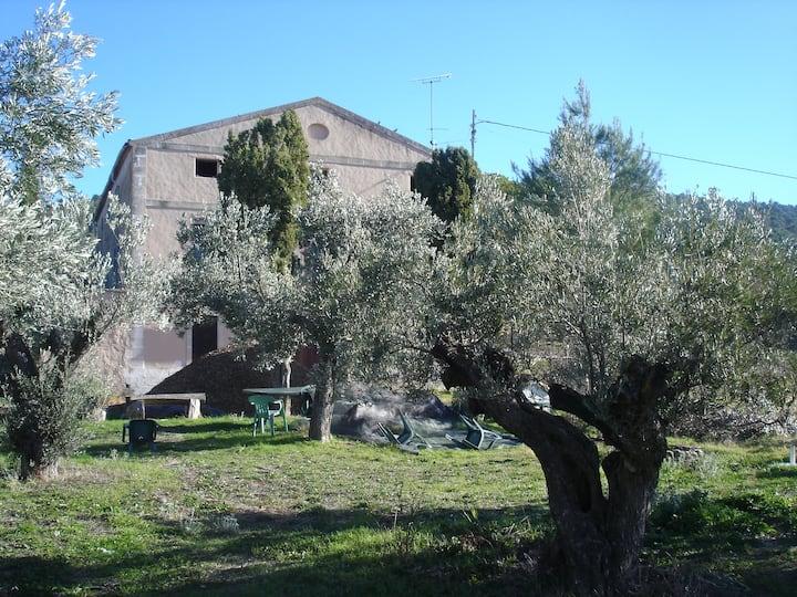 Masía Barbera junto Parque Natural
