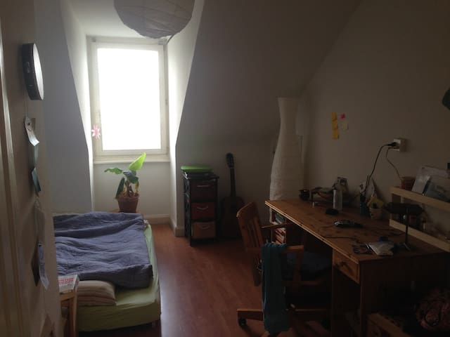 Cozy room in a beautiful place in Basel