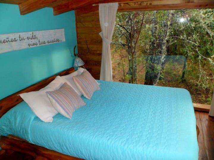 Las Nativas  | Cabaña rodeada de bosque nativo