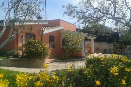 Relax in villa a 20 min da Roma - Lanuvio - Casa