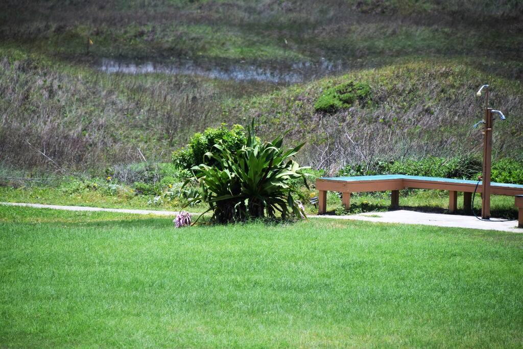 Bench, Yard, Field, Grass, Grassland