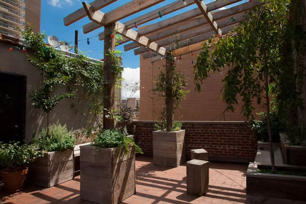 Shared Roof Garden