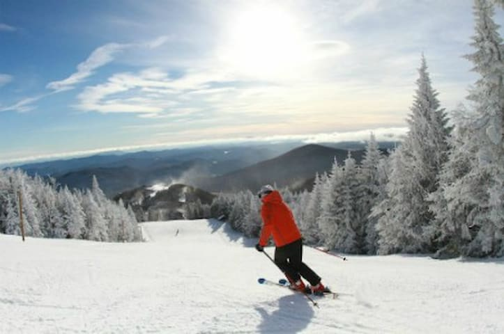 Ski Vacation! Music, dining & the arts - Marlboro - Casa