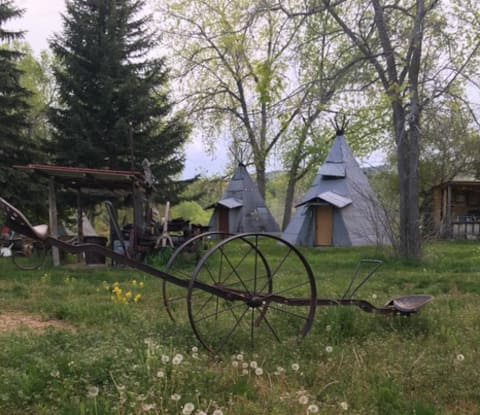Back to Nature in a Rustic Tepee/Cabin #5