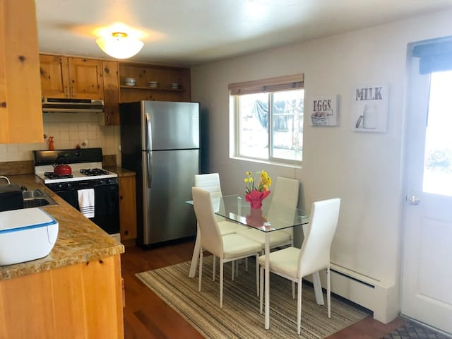 Downtown Aspen 2 Bedroom Apt - Walk to Everything