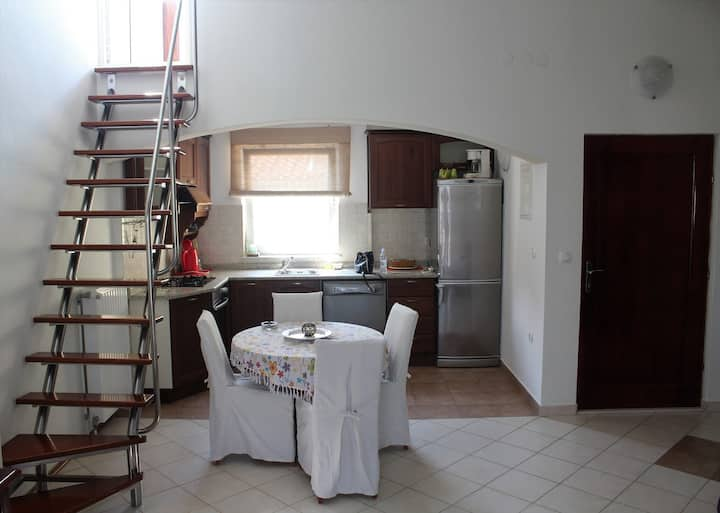 Apartments Milena / One bedroom apt with roof terrace-Andrej