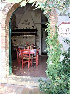 Cottage Olivo 2 in campagna a Cecina