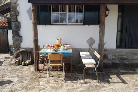 Quinta / Nature/ Peace/Space - Carvalhais - Bed & Breakfast - 2