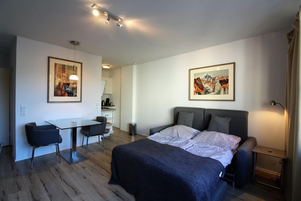 modernes und gem tliches 1 zimmer apartment wohnungen zur miete in hamburg hamburg deutschland. Black Bedroom Furniture Sets. Home Design Ideas