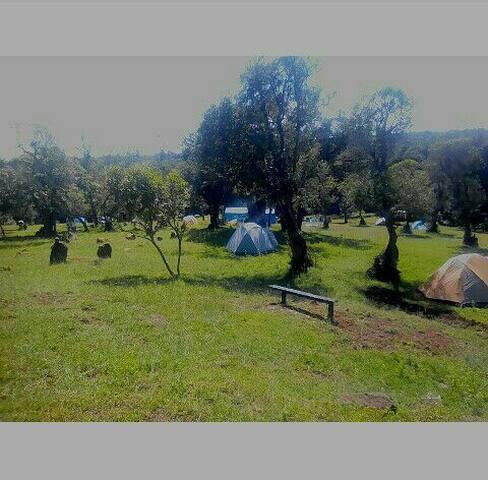 Chatrice Leisure Park Nanyuki