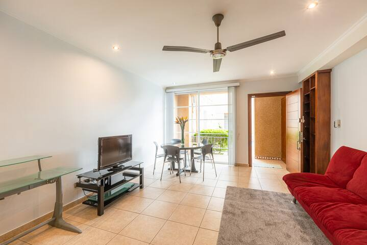 Large Living room and TV area