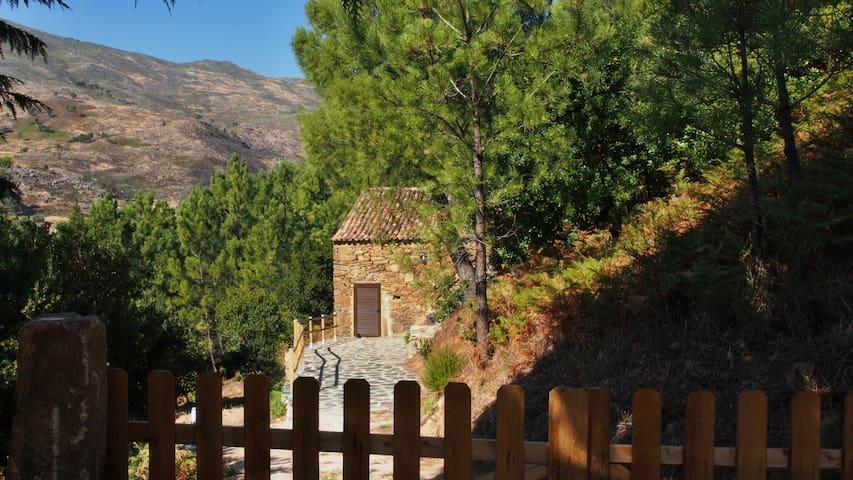 Qta das Vinhas: Palheiro no meio da S. da Estrela - Unhais da Serra