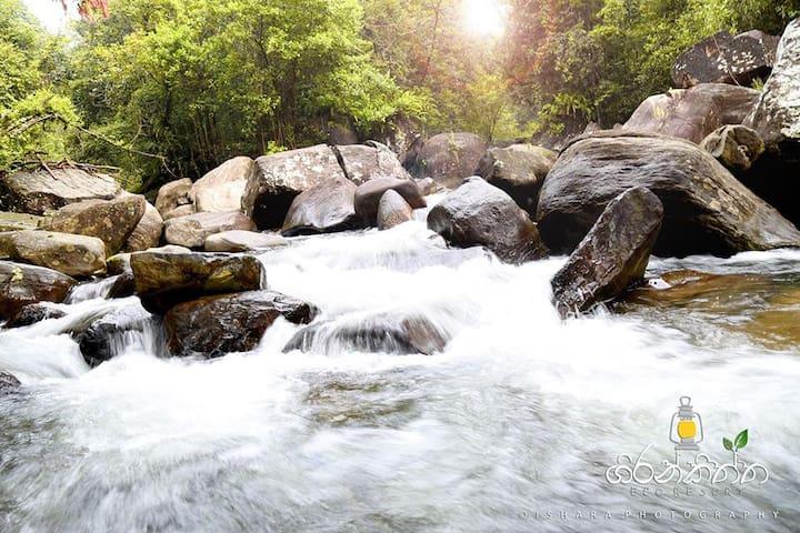 Girankiththa Eco Resort(3) - Kitulgala - Natur lodge