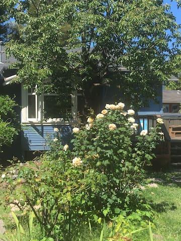 Casa Bleu: A Charming 1920's Cottage - Sonoma - House