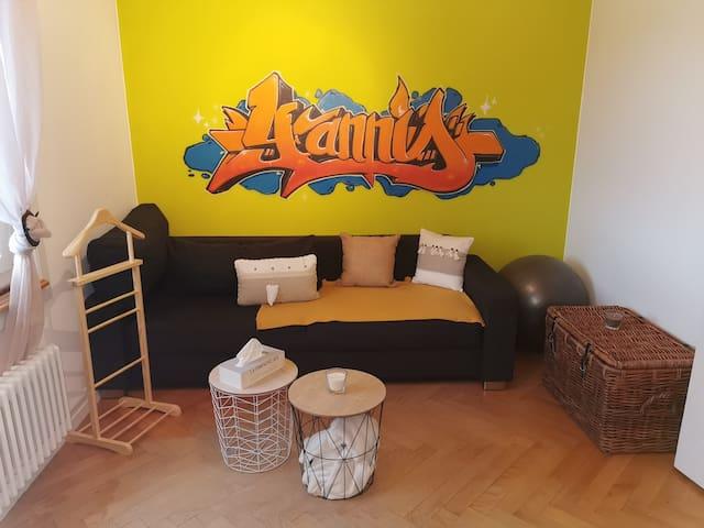 Chambre cosy dans grand appartement