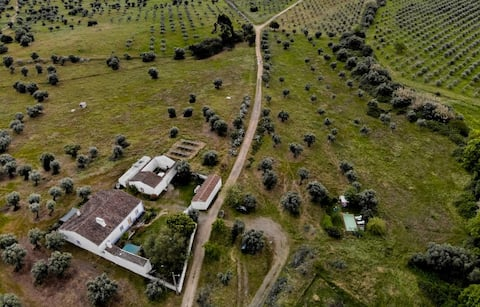 Restored Farm House on Olive Grove