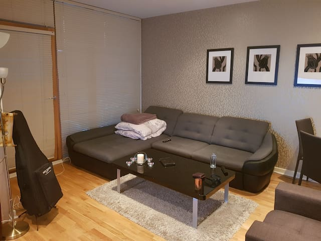 Apartment, large bed and a large fold out couch