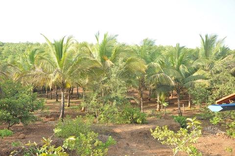 Khushi Cha Gaon-Farm Stay-Kasal, Malvan, Kokan