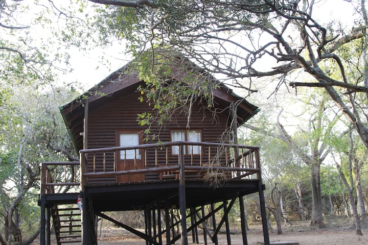 Treehouse in private game reserve