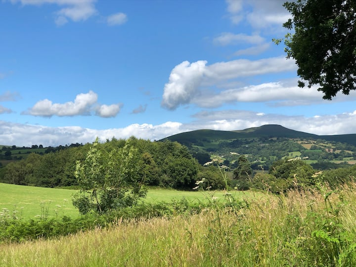 Brecon cottage - Have a break in the Beacons