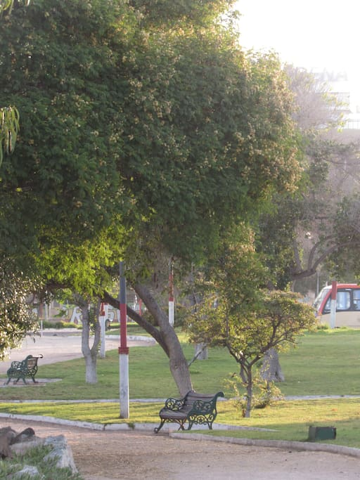 Hay un parque púbico a 100 metros. Nearest from public park.