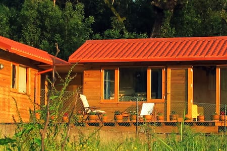 Quiet guesthouse near the forest and the river - Santa Comba Dão - Guesthouse