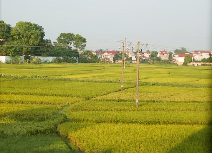 Cozy suburb house (13km from Noi Bai Airport)