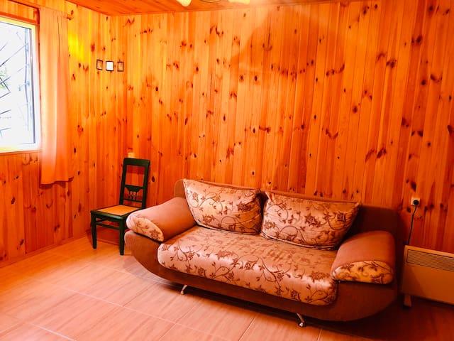 Диван-кровать. Удобный диван, где спокойно размешаются двое для комфортного сна.