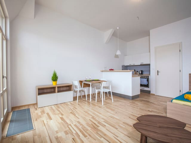 The attic apartment with a nice view - Prague - Apartmen