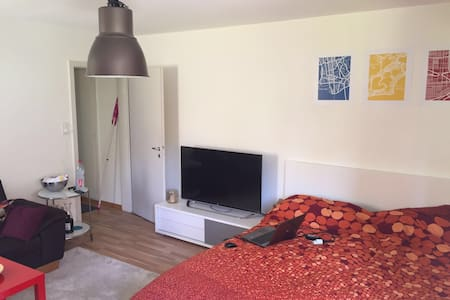 Studio Apartmant 39m2 - Zuric - Pis
