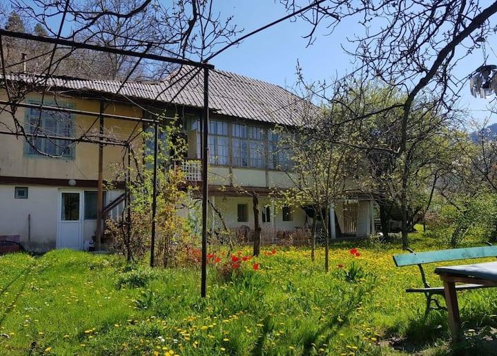 Cozy and Beautiful House in Likani, Borjomi