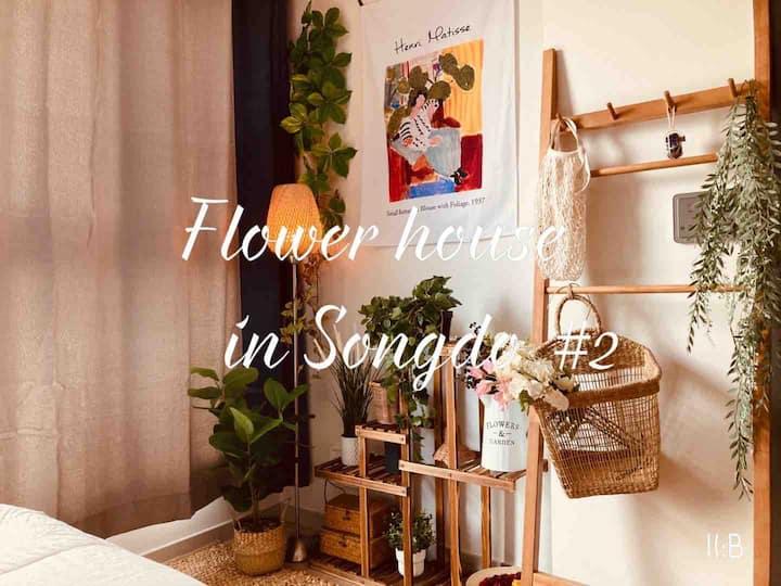 🍀OPEN SALE!🍀트리플 스트릿 도보 1분,꽃내음 가득한 도심속 야경맛집✨