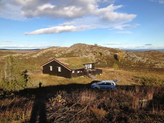 Flotte turmuligheter på høyfjellet! Ål /Hallingdal