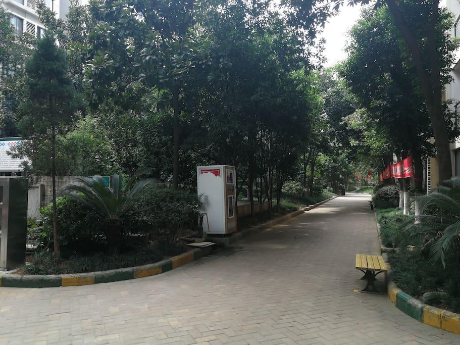 保利花园中央花园香樟树成林,小区内外地面总是保持一尘不染,不愧为央企保利物业!