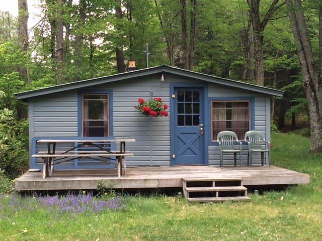 Cozy Catskills Cabin