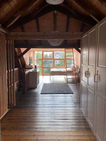 Big cozy room with roof-deck/ near Messe Basel