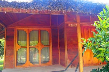 Arcadia Cirali - Kemer - Butikový hotel