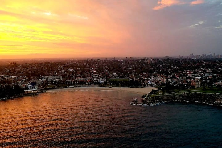 D Coogee View