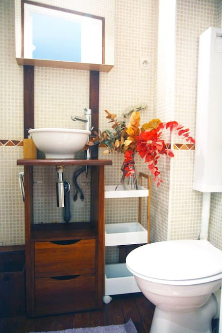 The bathroom, with shower and space heater.