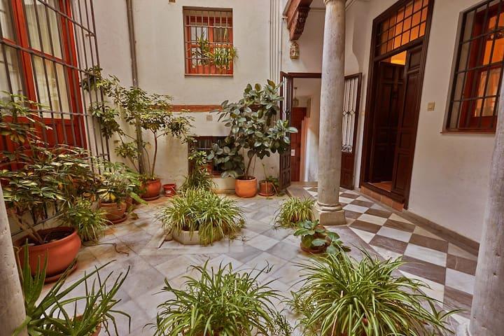 Charming, spacious Albayzin apartment