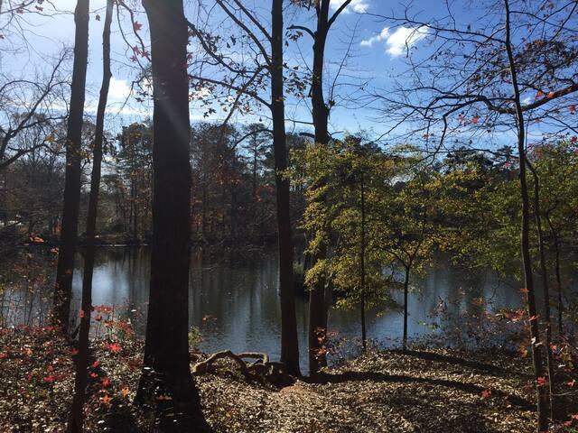 Peaceful gated apt in East Atlanta - Atlanta - Apartemen