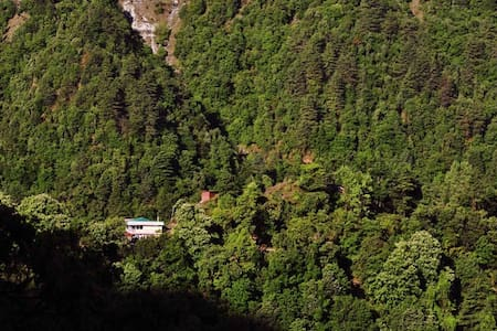 A quite and isolated boutique B&B-3 - Mussoorie - Bed & Breakfast
