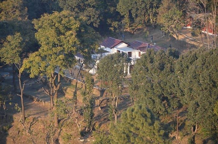 Windsor Cottages (BY Nature Group) - Lansdowne - Vila