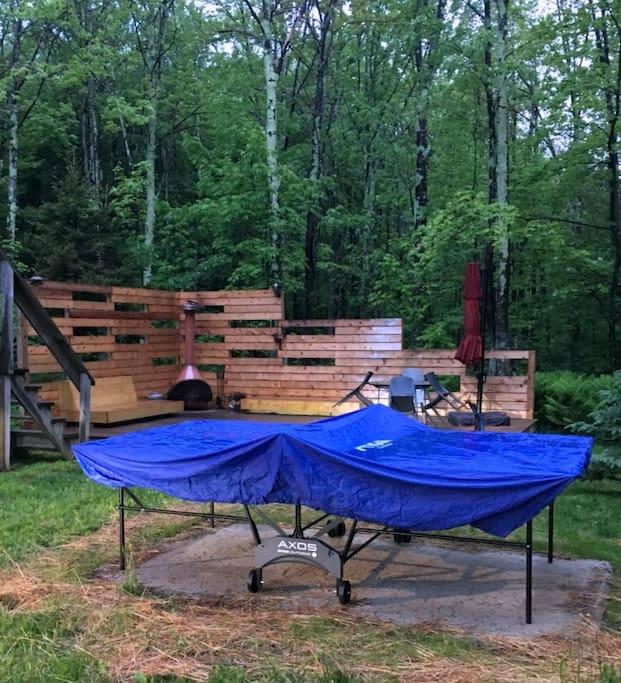 New OUTDOOR ping pong table (seasonal)